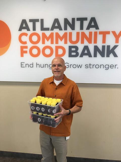 bee, beekeeping, climate, Atlanta community food bank, honey, spring, crush and strain, flowers