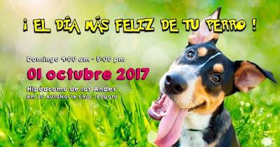BOGOTA DOG FEST 2017 1