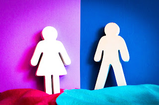 An image depicting two figures commonly seen on public toilets, one male and one female. The female figure is on a pink background and the male figure is on a blue background