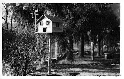 Photo ancienne d'Auvergne : lieux divers.