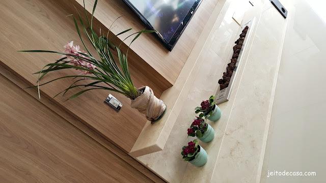 plantas-para-decorar-a-casa
