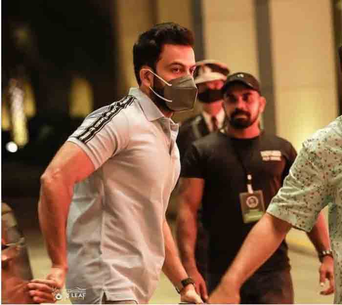 Actor Prithviraj shines in Burberry Logo Tape Cotton Polo Shirt, Kochi, News, Cinema, Actor, Prithvi Raj, Marriage, Social Media, Kerala