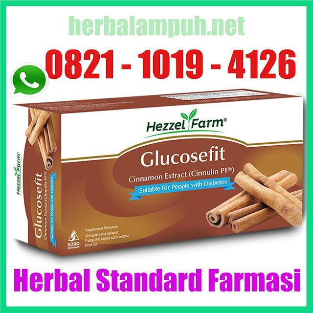 Obat Herbal Diabetes Glucosefit