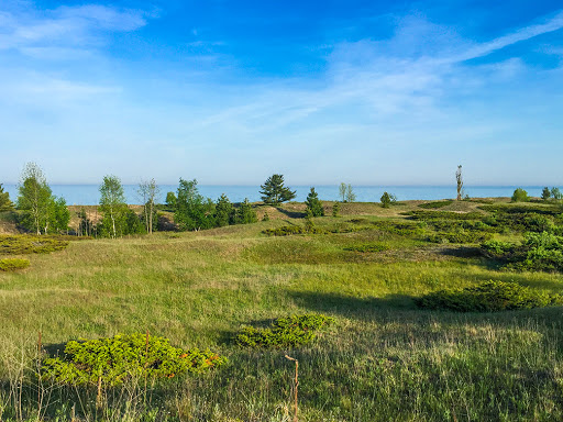 The Dune Cordwalk Trail at Kohler Andrae State Park in Sheboygan WI