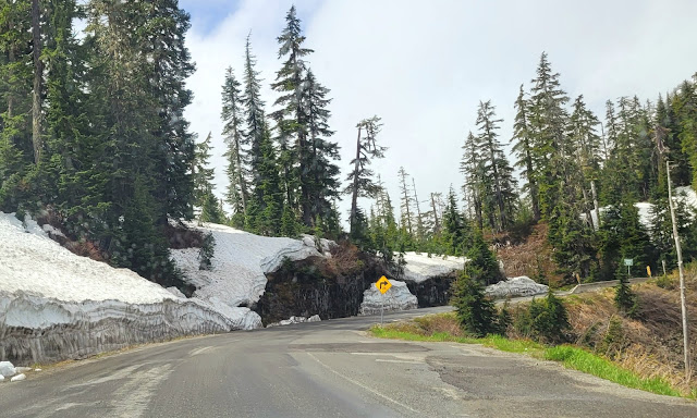 Still a lot of snow on the side of the road to Mt. Baker in June
