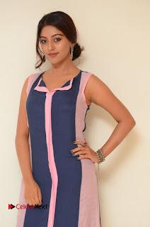 Actress Anu Emmanuel Pictures in Long Dress at Majnu Audio Success Meet 0006