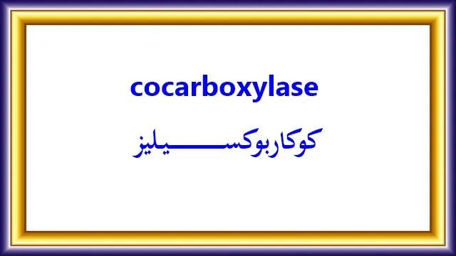 cocarboxylase كوكاربوكسيليز