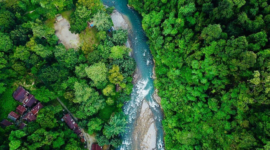 Keindahan Taman Nasional Gunung Leuser Dan Misteri Dibalik Keindahannya Basecamp Pendaki