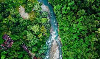 Keindahan Taman Nasional Gunung Leuser dan Misteri Dibalik Keindahannya