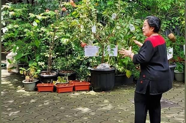 Hersubeno Ngaku dapat WA dari Dokter soal Kabar Megawati Koma Valid, Begini Penjelasan PDIP