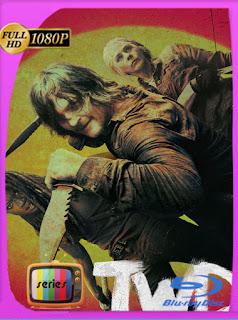 The Walking Dead Temporada 10 HD [1080p] Latino [Google Drive] Panchirulo