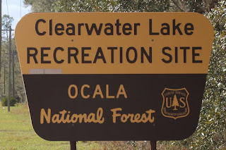 En el Ocala National Forest