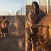 Lion refuses to give away until it gets a cuddle from its favorite ranger (photos/video)