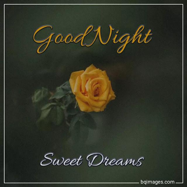 beautiful good night flowers