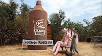 Northern Territory BIG Things | BIG Stubbie Larrimah