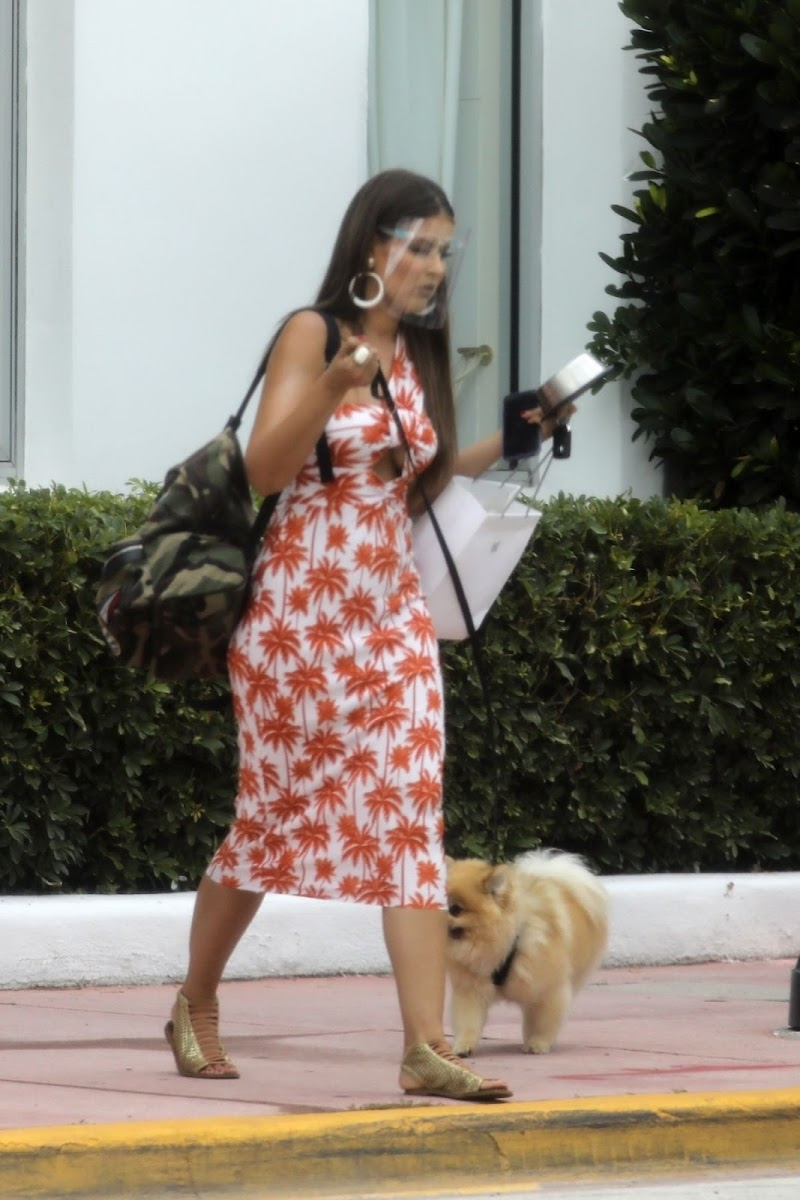 Vanessa Claudio Clicked Outside with Her Dog in Miami Beach 13 Aug- 2020