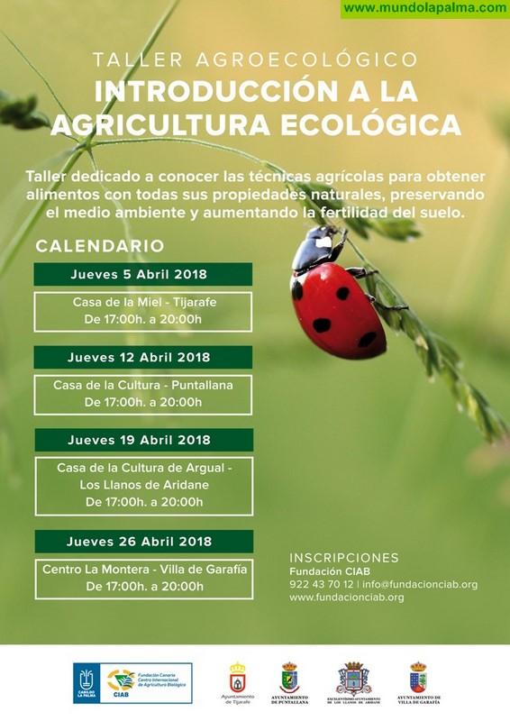 El Cabildo y la Fundación CIAB fomentan la agricultura ecológica y sus posibilidades en el mercado