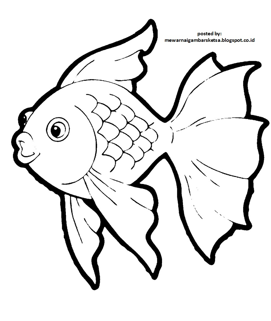 Sketsa Gambar Hewan Ikan