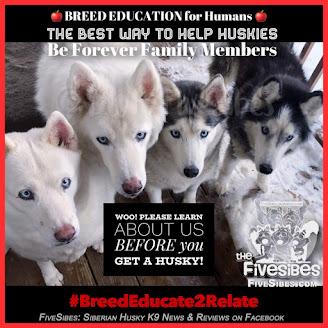 #BreedEducate2Relate #WaitingWednesday #Rescue Blog Hop