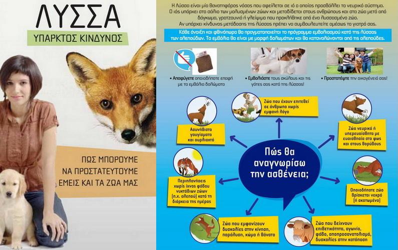 Παγκόσμια Ημέρα κατά της Λύσσας. Πρόγραμμα καταπολέμησης και επιτήρησης της λύσσας