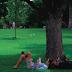 ZPP Meio Ambiente: Aproveite o verão cuidando do meio ambiente