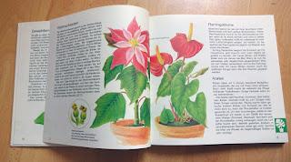 Elisabeth Manke: Alle meine Pflanzen. Gartenbuch für Kinder