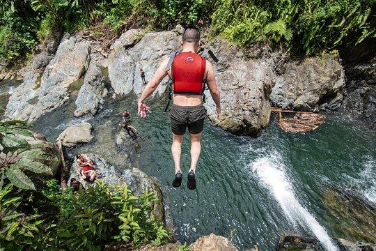 Bosque Nacional El Yunque es el hogar de la única selva tropical en el Bosque Nacional de los EE. UU