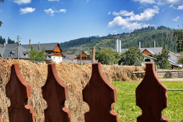 Gard de oameni gospodari - blog FOTO-IDEEA