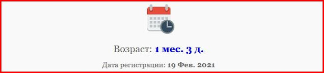 возраст домена paradtrade.com: