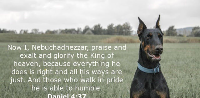 Now I, Nebuchadnezzar, praise and exalt and glorify the King of heaven, because everything he does is right and all his ways are just. And those who walk in pride he is able to humble.