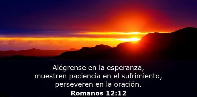 Alégrense en la esperanza, muestren paciencia en el sufrimiento, perseveren en la oración.