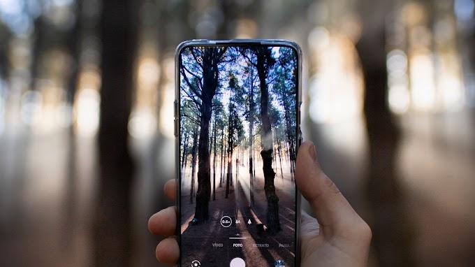Tirando Foto na Natureza com Celular
