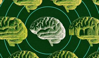 يجبر الفيروس التاجي عمالقة التكنولوجيا على القيام برهان محفوف بالمخاطر على الذكاء الاصطناعي