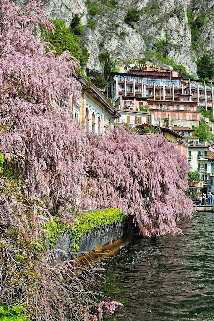 Ausflugsmöglichkeiten am Gardasee