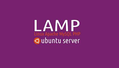 Mending yang Mana : Pasang LAMPP atau Server Apache Sendiri?
