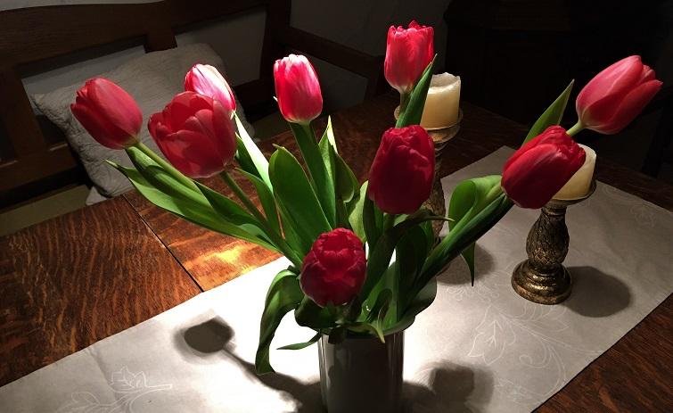 Tulpenstrauß im Winter