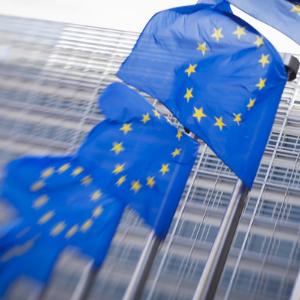 Avrupa Birliği Organları:  Zirve, Sayıştay, Merkez Bankası ve AB Adalet Divanı