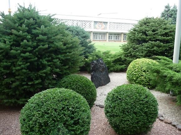 Донецк. Ботанический сад. Уголь и сад