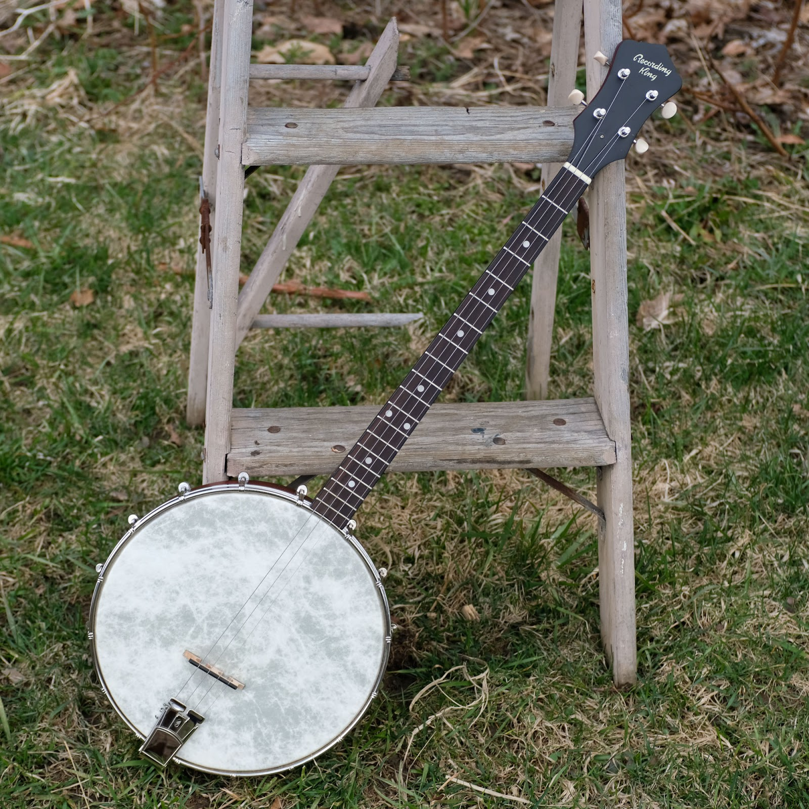 2017 Recording King RKT-05 Dirty 30s Tenor Banjo