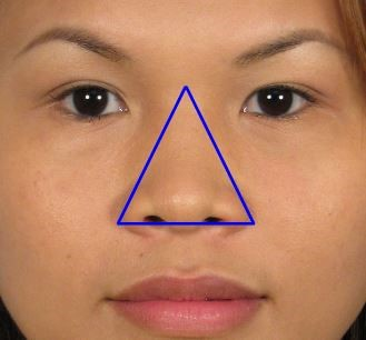 Nose Types - Personality, Ethnicity and Ancestry
