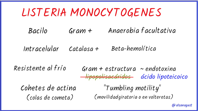 listeria monocitogenes, listeriosis