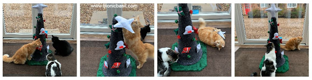 Catmas Crafting with Cats Special ©BionicBasil® Catmas Tree Scratcher with Fudge Parsley & Melvyn