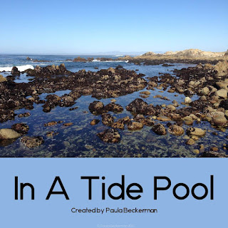 https://www.teacherspayteachers.com/Product/In-A-Tide-Pool-Non-fiction-Guided-Reading-Book-1868614