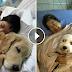 Acest spital le permite animalelor de companie să-şi viziteze stăpânii bolnavi. Ce iniţiativă minunată!