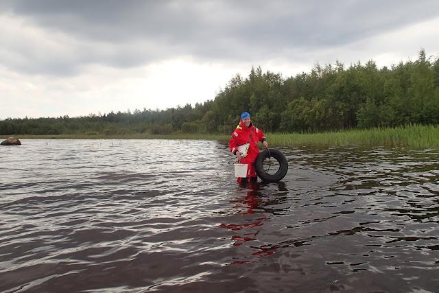 Oranssiin pelastautumispukuun pukeutunut henkilö kantaa merestä löytämäänsä auton rengasta polven syvyisessä vedessä.