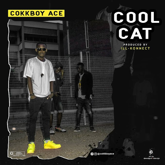 Music: Cokkboyace - Cool Cat (Prod. By IllKonnect)