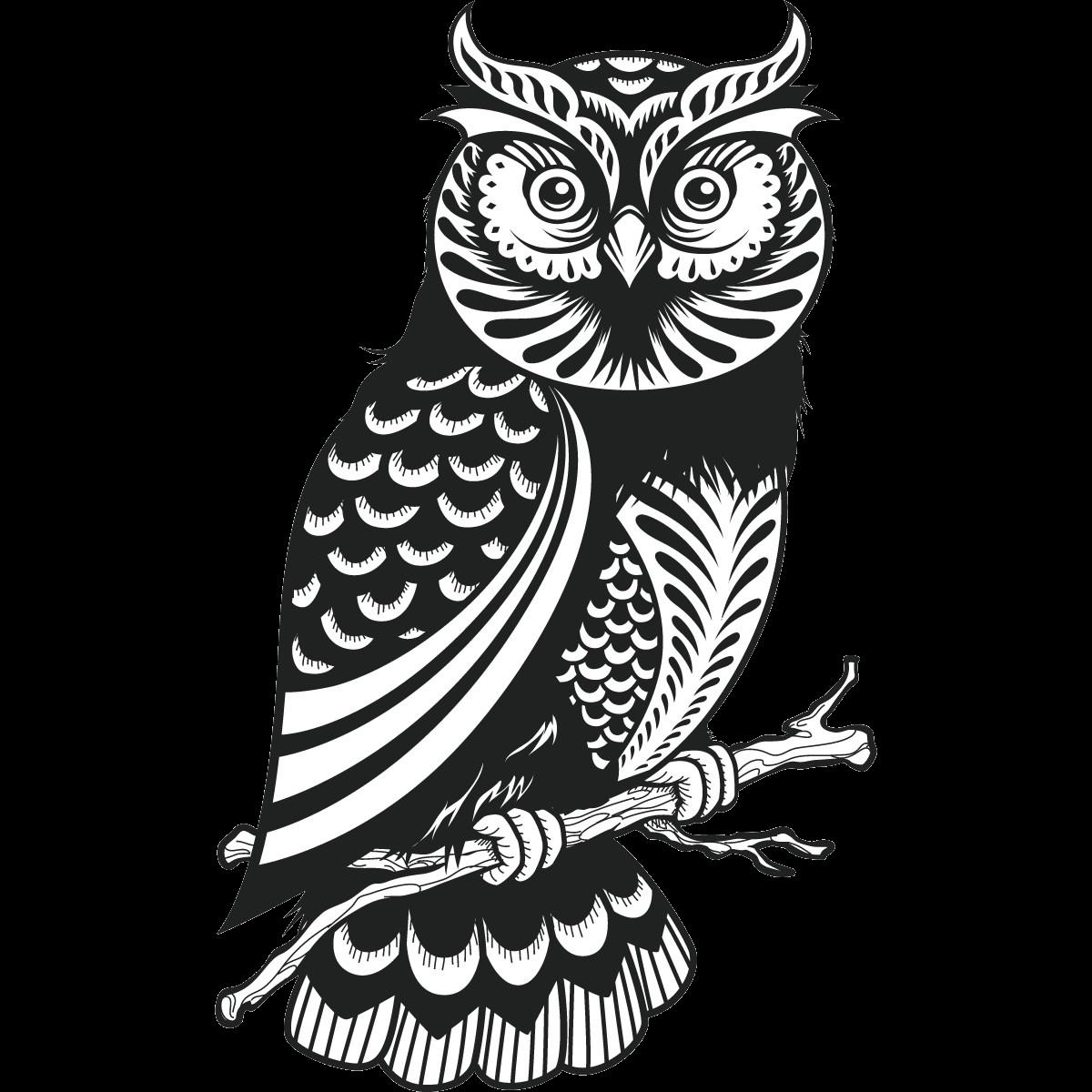einzigartige owl dreamcatcher mandala malvorlagen  free