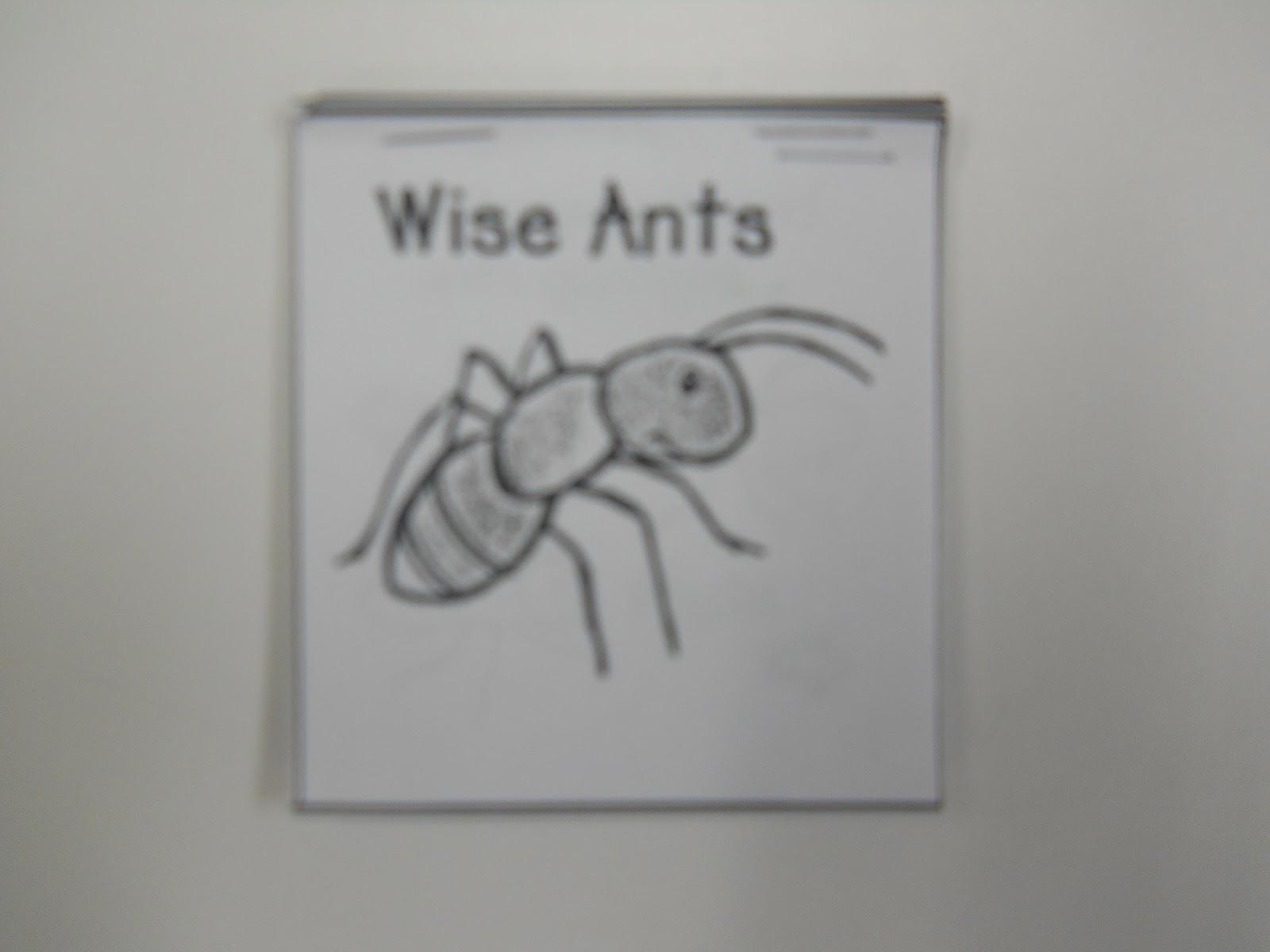 Mrs T S First Grade Class Ants