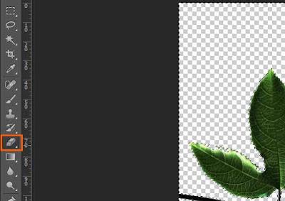 cara-menghapus-background-di-photoshop