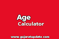 Age Calculator | Calculate your Age
